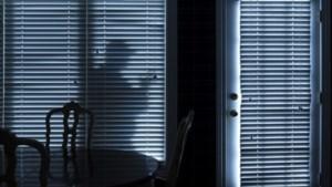 Agenten betrappen inbreker in woning, verdachte aangehouden