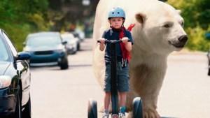 Privédetective Timmy met ijsbeer doet je smelten