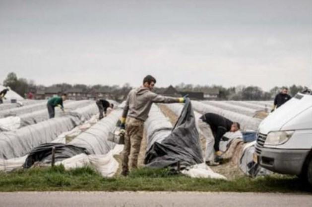 D66 wil arbeidsmigrant tijdelijk naar Nederland halen