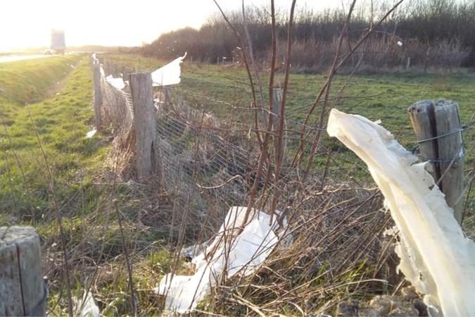Plasticverwerker Van Kaathoven ruimt zwerfafval Nieuwstadt op na klachten