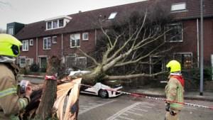 Storm Dennis: zondag uitzonderlijk warme maar winderige en natte dag in Limburg