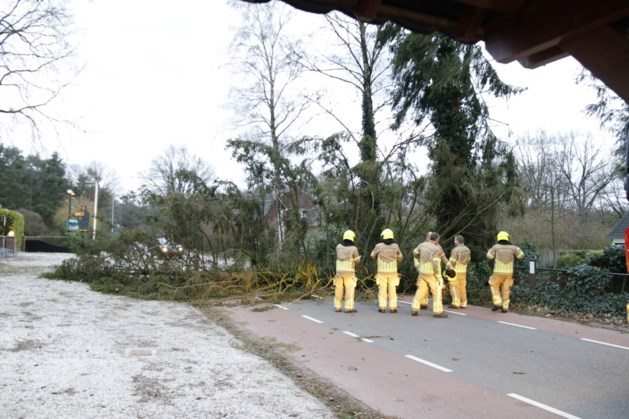 Veel meldingen van omgevallen bomen en afgewaaide dakpannen