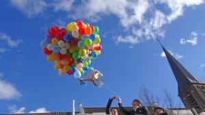 Schinveldse Hoej-Hoej-Comité viert vijftiende verjaardag