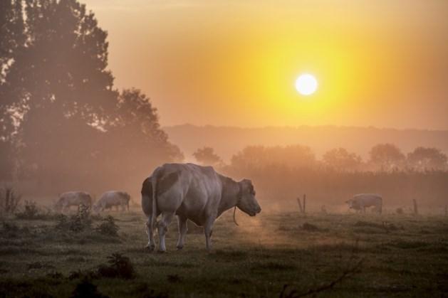 Gemeente Eijsden-Margraten licht visie op Middenterras toe