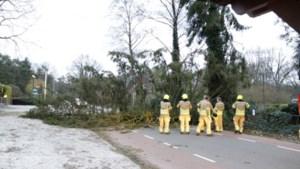 Ongeveer 500 meldingen over storm Dennis bij Interpolis