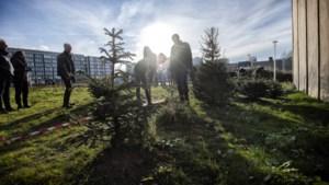 Bestemmingsplan gewijzigd: Heerlen schroeft aantal woningen in Schinkel-Zuid terug