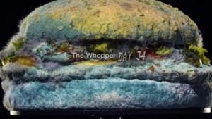 Burger King adverteert met beschimmelde burger