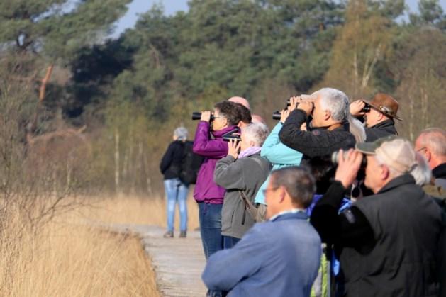 Vroeg uit de veren om vogels te spotten in De Groote Peel