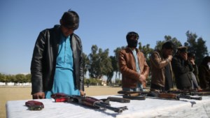 'Periode van minder geweld' in Afghanistan; bestand tussen Taliban en VS: