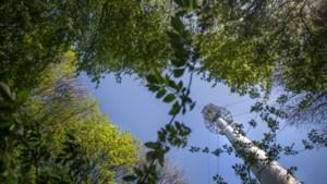 Gulpen-Wittem trekt beurs voor antenne lokale omroep 3Heuvelland