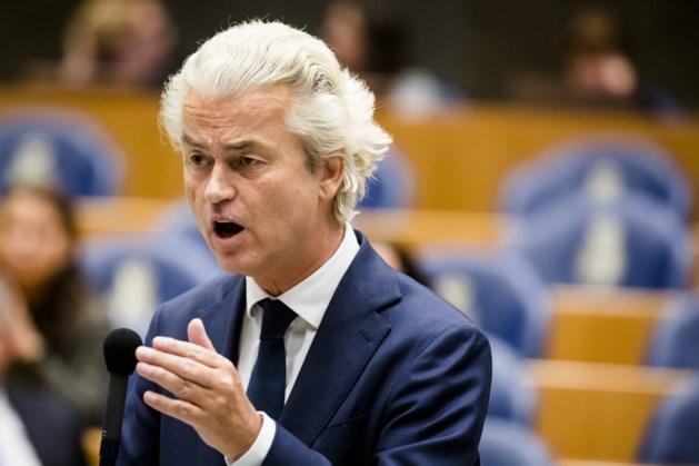 Geert Wilders en Dion Graus doen aangifte tegen slachthuis in IJsselstein: 'Dierenmishandeling is onacceptabel'