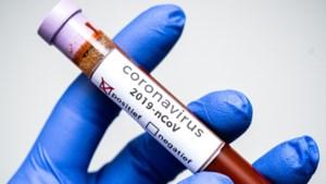 Virologen voorzien geen grote uitbraak corona in Nederland