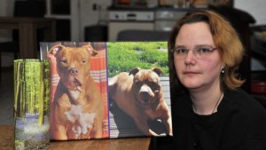 Hond Luca lag maand in vrieskist in afwachting van resomeren