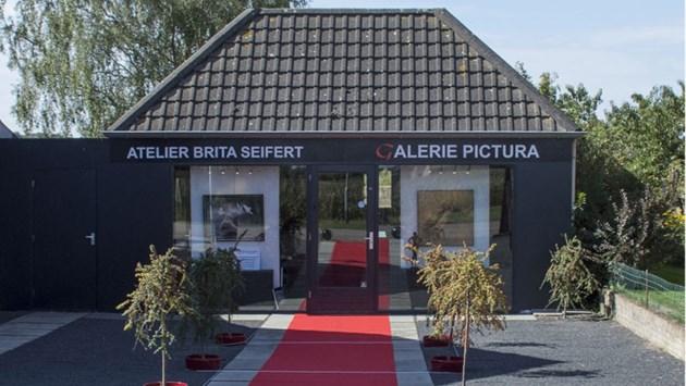 Galerie Pictura zet vrouwen in de picture met nieuwe expositie