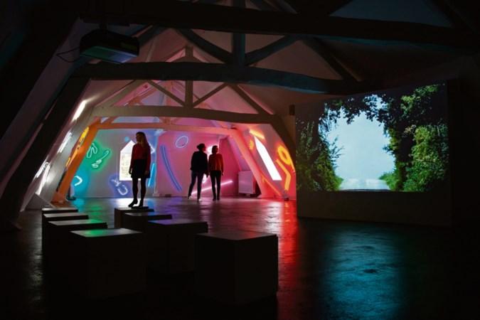 Kunstenaar Chaim van Luit zet littekens in de lak voor expositie in Wijlre