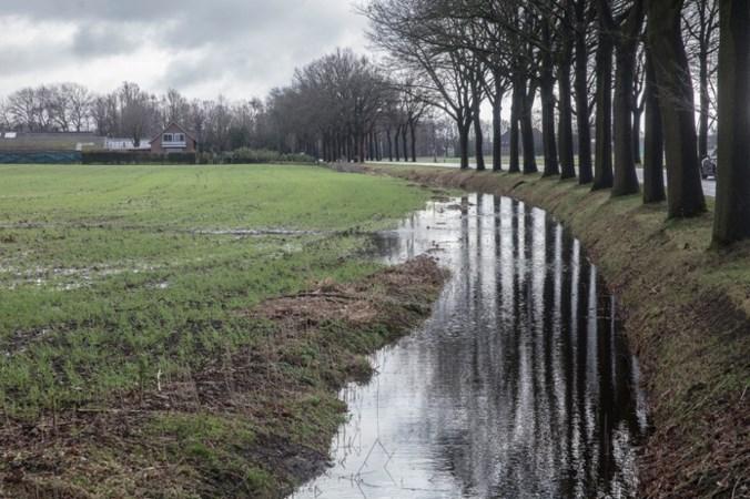 Miljoenen geëist van dubieuze grondboer uit Budel die handelde in 'waardeloze' landbouwgrond