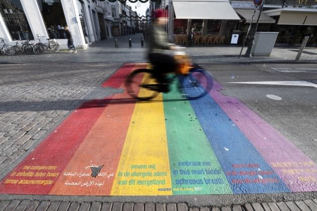 Rainbow City Maastricht wil diversiteit vieren