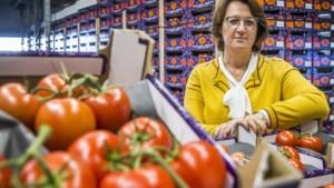 Venloos bedrijf ziet omzet halveren door corona: 'We kunnen niets doen'