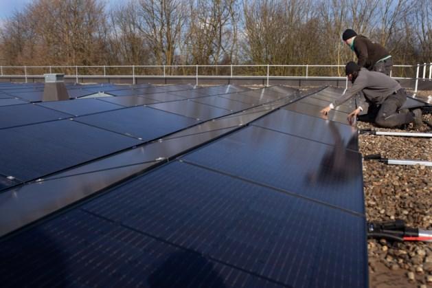 Gemeentehuis Stein vol met zonnepanelen