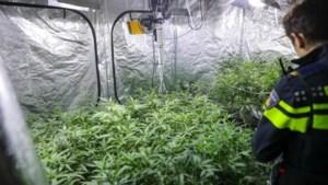Politie treft twee hennepkwekerijen aan in bedrijfspand Nederweert