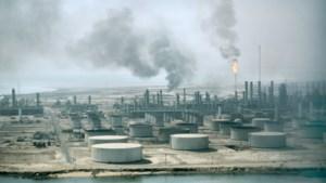 Oliereuzen rollen vechtend over straat