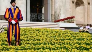 Corona: geen Limburgse bloemen voor de paus
