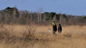 Staatsbosbeheer blaast excursies in heel het land af om virus