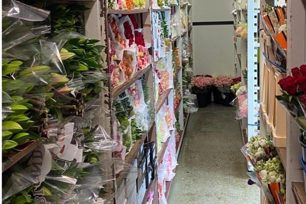 Spontane bloemenactie voor Limburgse zorginstellingen: 'De reacties zijn overweldigend'