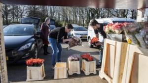 Limburgers bezorgen duizenden bloemen bij zorginstellingen: 'Dat is ook het mooie van slechte tijden'