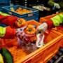 Crisis bij voedselbanken in Limburg: 'Het is héél hard improviseren'