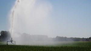 Boeren gebruikten helft meer drinkwater door recorddroogte