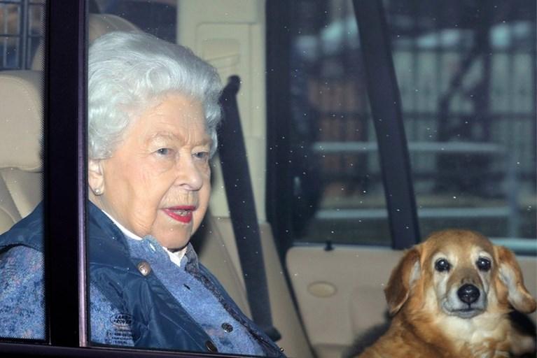 Paniek in Buckingham Palace: medewerker heeft corona en prins Charles in quarantaine