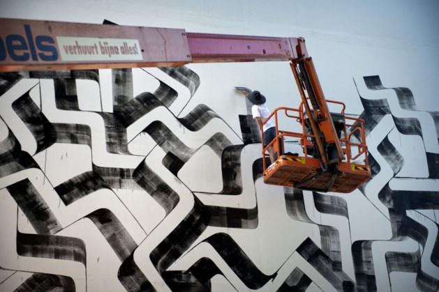 Heerlense murals krijgen plek in lijst van sleutelwerken kunst in openbare ruimte