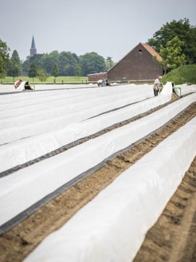 Paniek en angst onder arbeidsmigranten in Limburg: 'Ze weten zich geen raad'