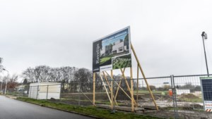 Ecoloog verplaatst handmatig vroedmeesterpad van bouwterrein in Maastricht