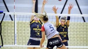 Limburgse volleybalverenigingen krijgen komende week duidelijkheid
