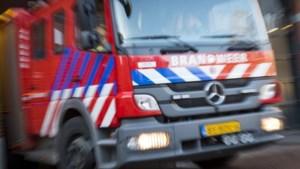 Twee voertuigen en heg beschadigd na autobrand in Munstergeleen