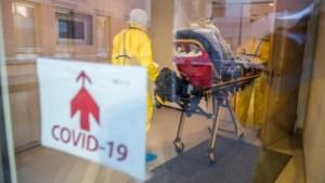 Belgische dodental coronavirus boven de 500