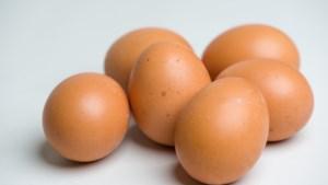 Pluimveesector boos: eieren zonder Beter Levenkeurmerk in schappen, maar niet vermeld op verpakking