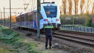 Ongeval bij spoorwegovergang in Geleen; treinverkeer hervat