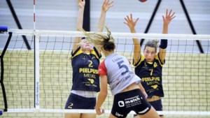 Nieuwe volleybalpiramide pakt goed uit voor Limburgse clubs
