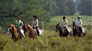 Routenetwerk paardrijden over de grens weer een stap dichterbij