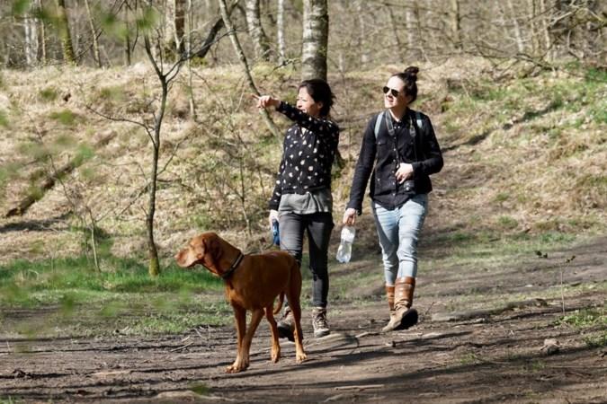 Oproep boswachters: geef elkaar de ruimte en hou honden aangelijnd!