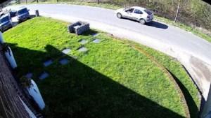 Politie zoekt getuigen na zware mishandeling in Maasbree