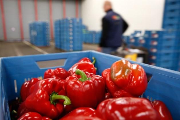 'Aanbod groente en fruit schraler door coronavirus'