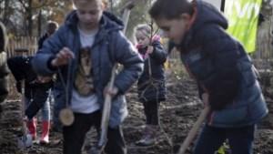 Weerter wijken Molenakker, Graswinkel en Keent krijgen tiny forest