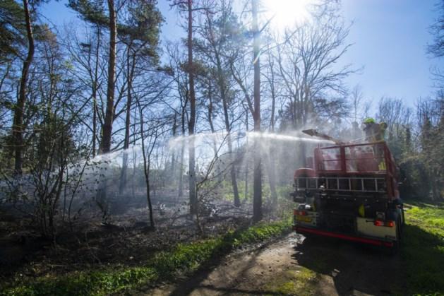 Brandweer blust natuurbrand in Venlo