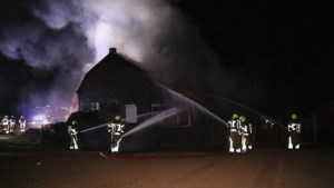 Video: Uitslaande brand in hondenpension Montfort