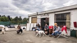 PvdA Maastricht wil duidelijkheid over gekraakte kantine Scharn
