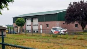 Limburgers achter drugslab Maarheeze mogen naar huis uit voorarrest